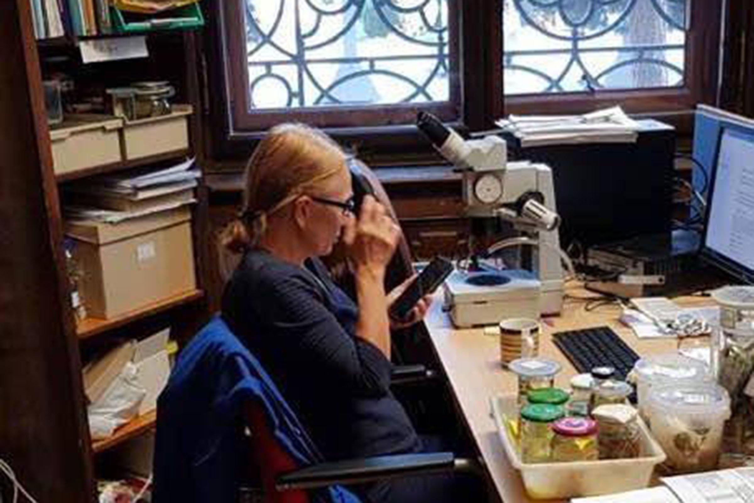 BAP Expert Nina G. Bogutskaya
