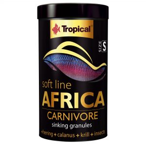 Tropical Africa Carnivore Size S