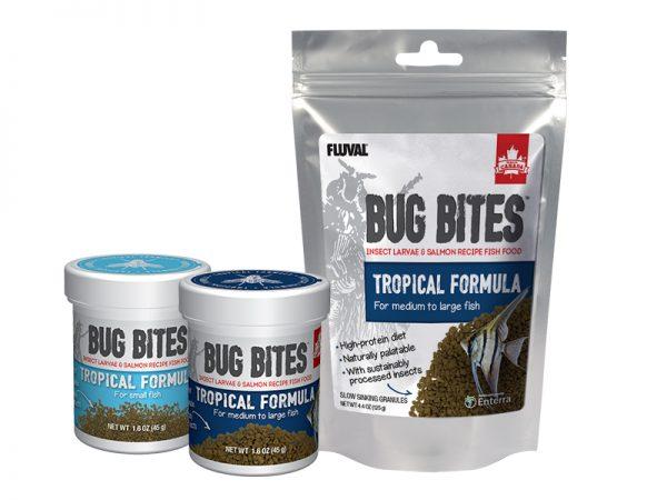 Bug Bites Tropical Family