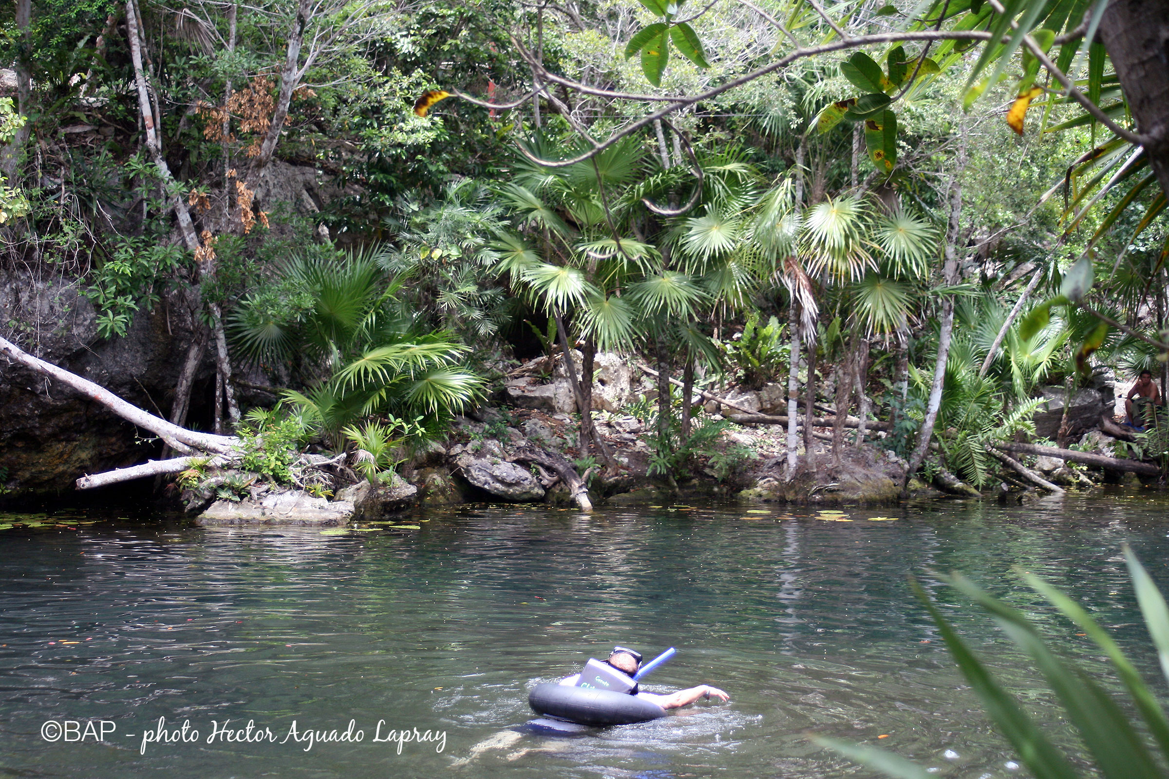 Cenote Chikin Ha, Mexico. ©BAP, photo H.A. Lapray