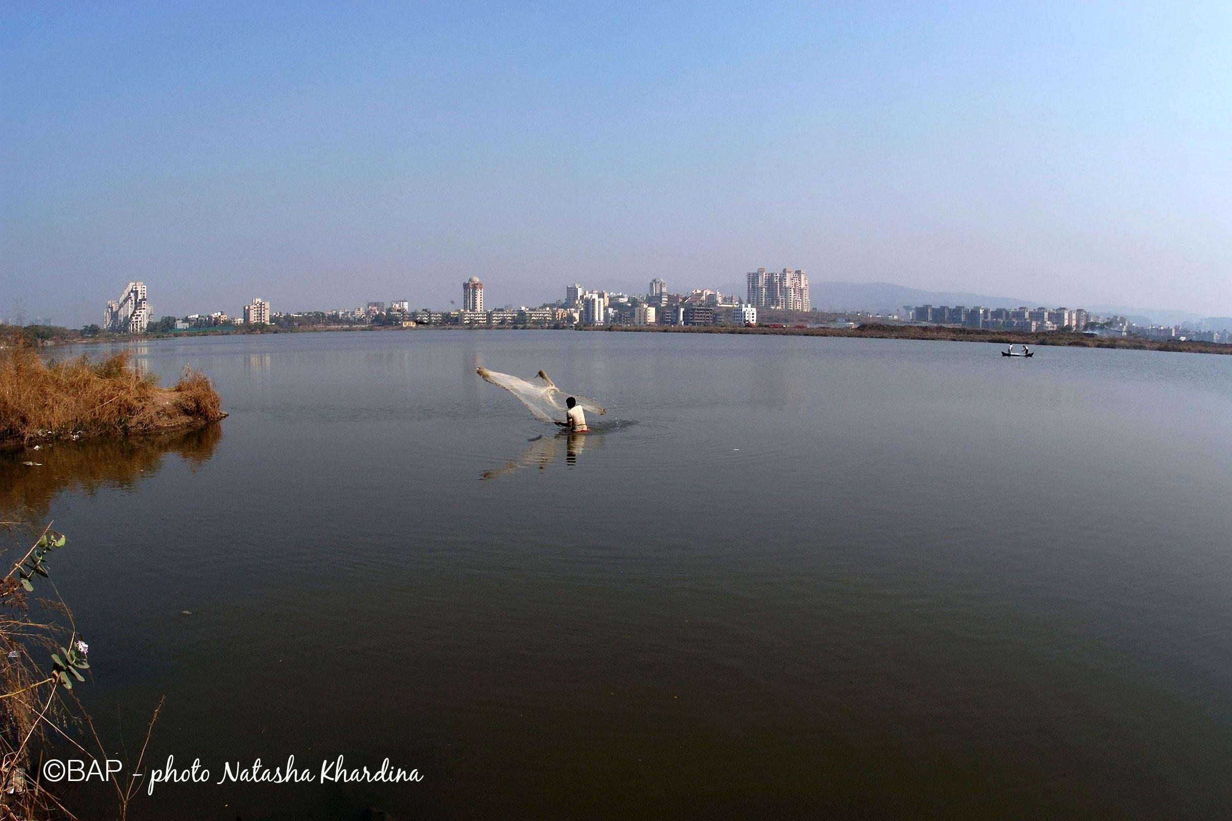 Panvel Creek, Maharashtra. ©BAP, photo N. Khardina