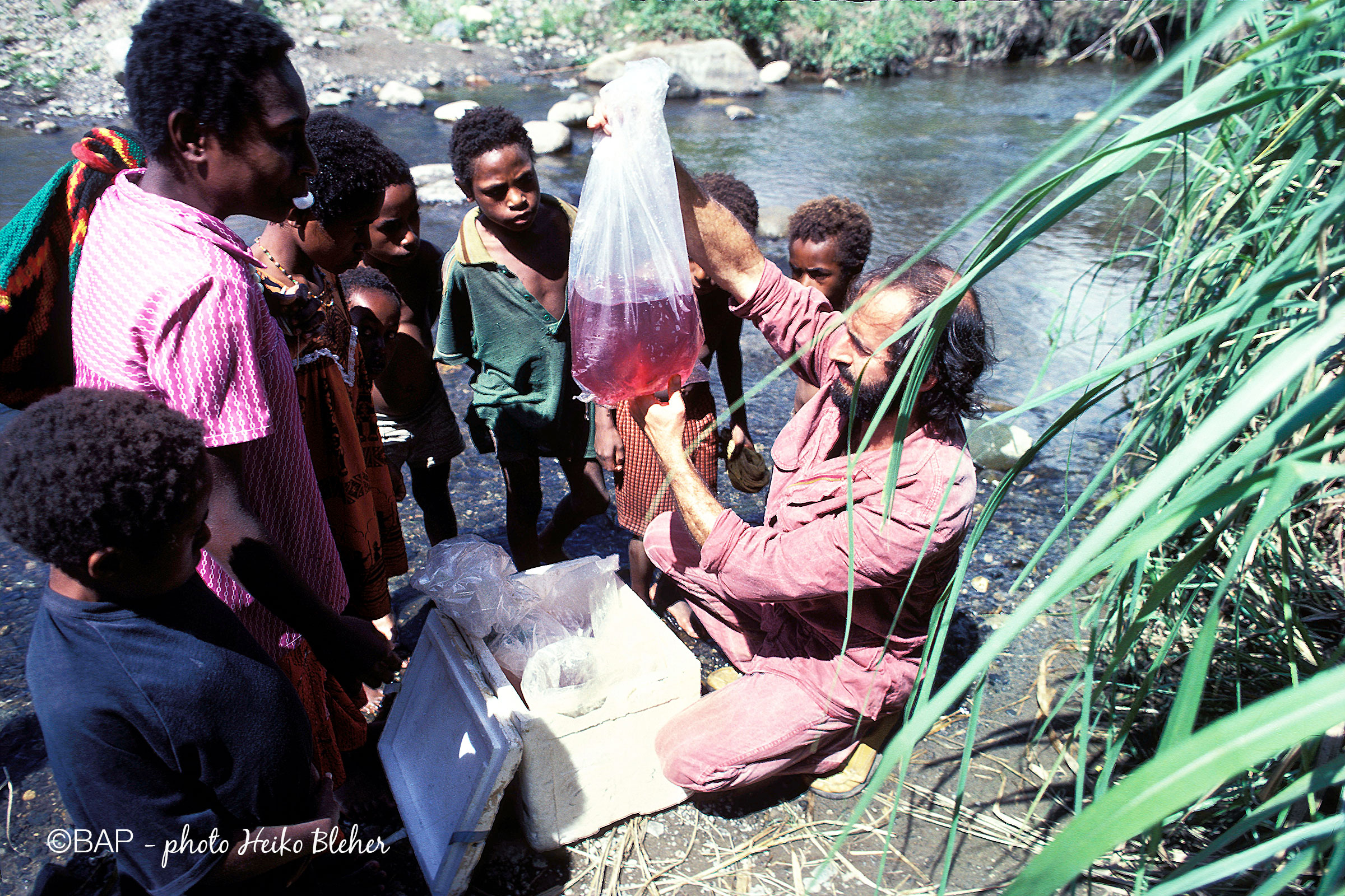 Safia River tributary, Safia Valley, PNG. ©BAP, photo H. Bleher