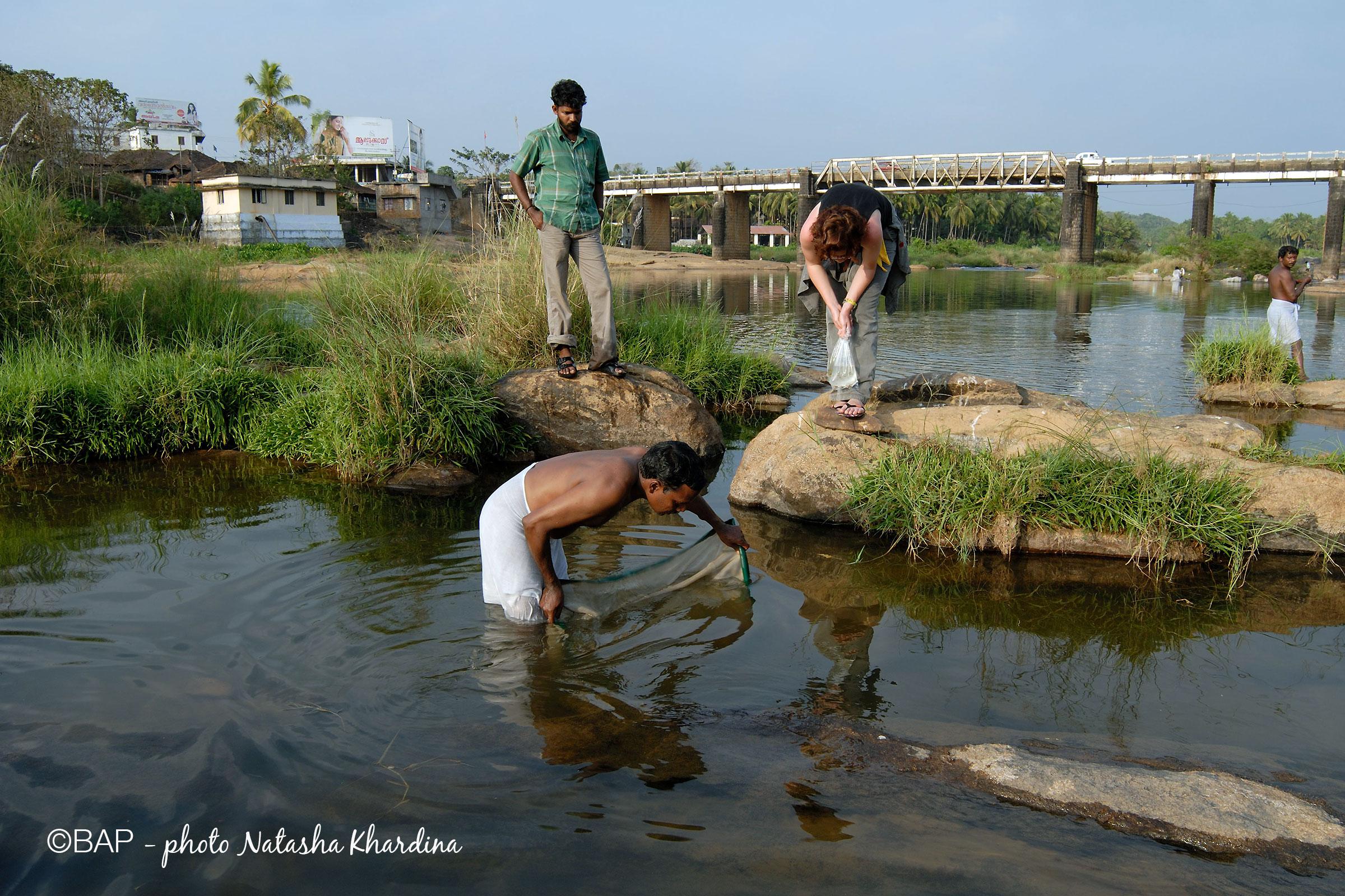 Tuda river, Kerala. ©BAP, photo N. Khardina
