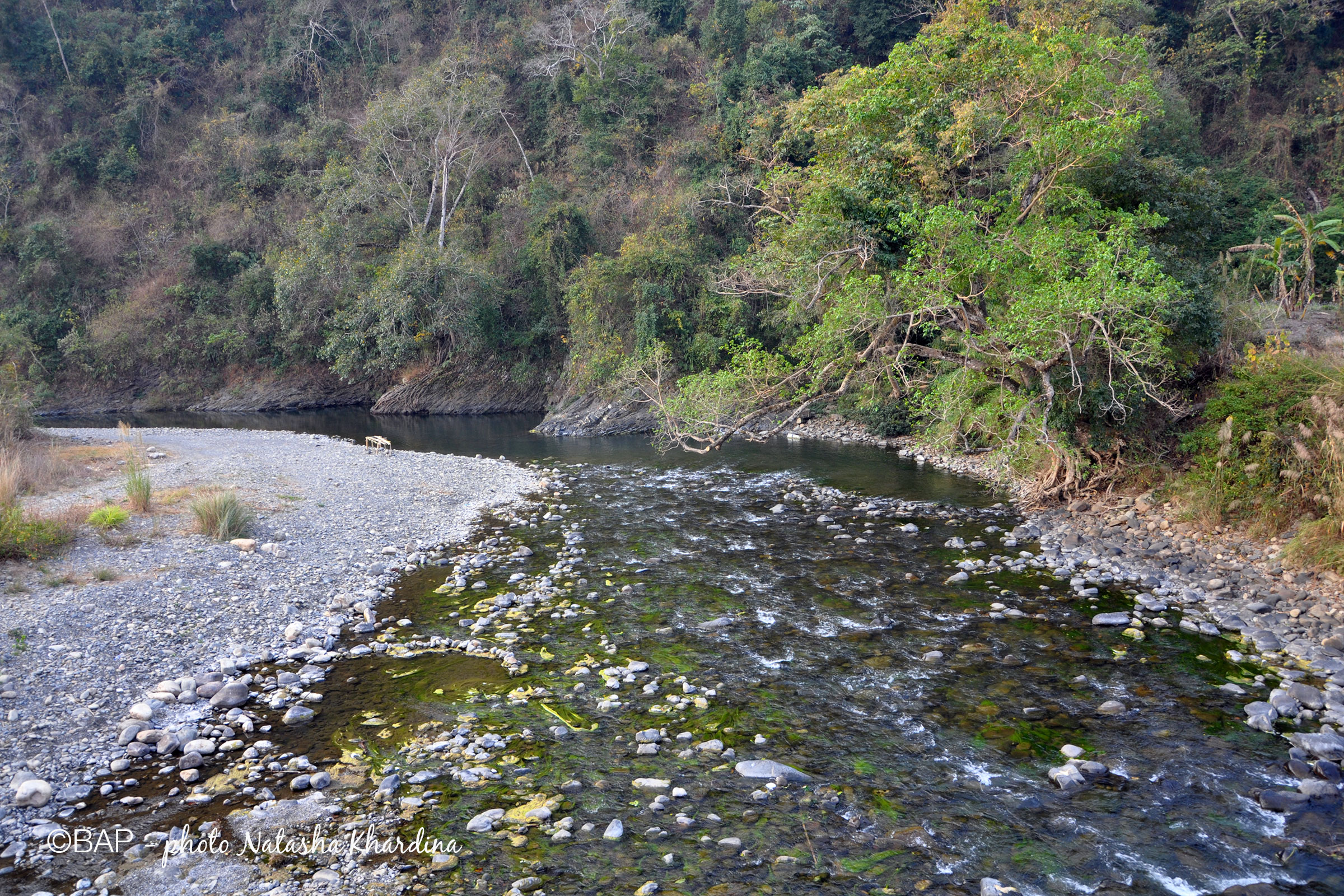 Jiji River, Nagaland, India. Photo by N. Khardina