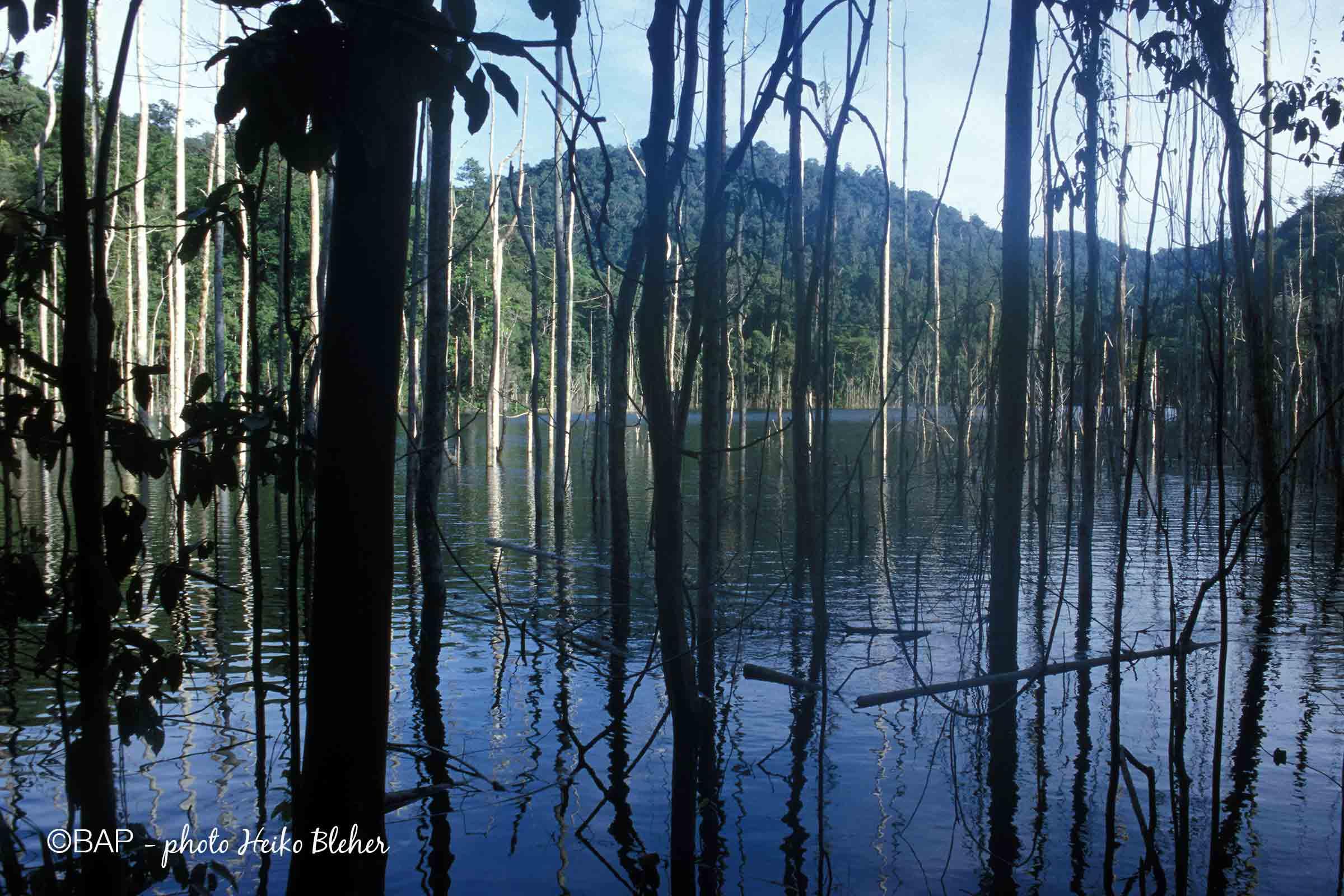 Kurumoi Lake, West Papua, Indonesia. ©BAP, photo H. Bleher