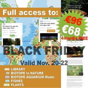 ADVANCED subscription 1 year BLACK FRIDAY offer