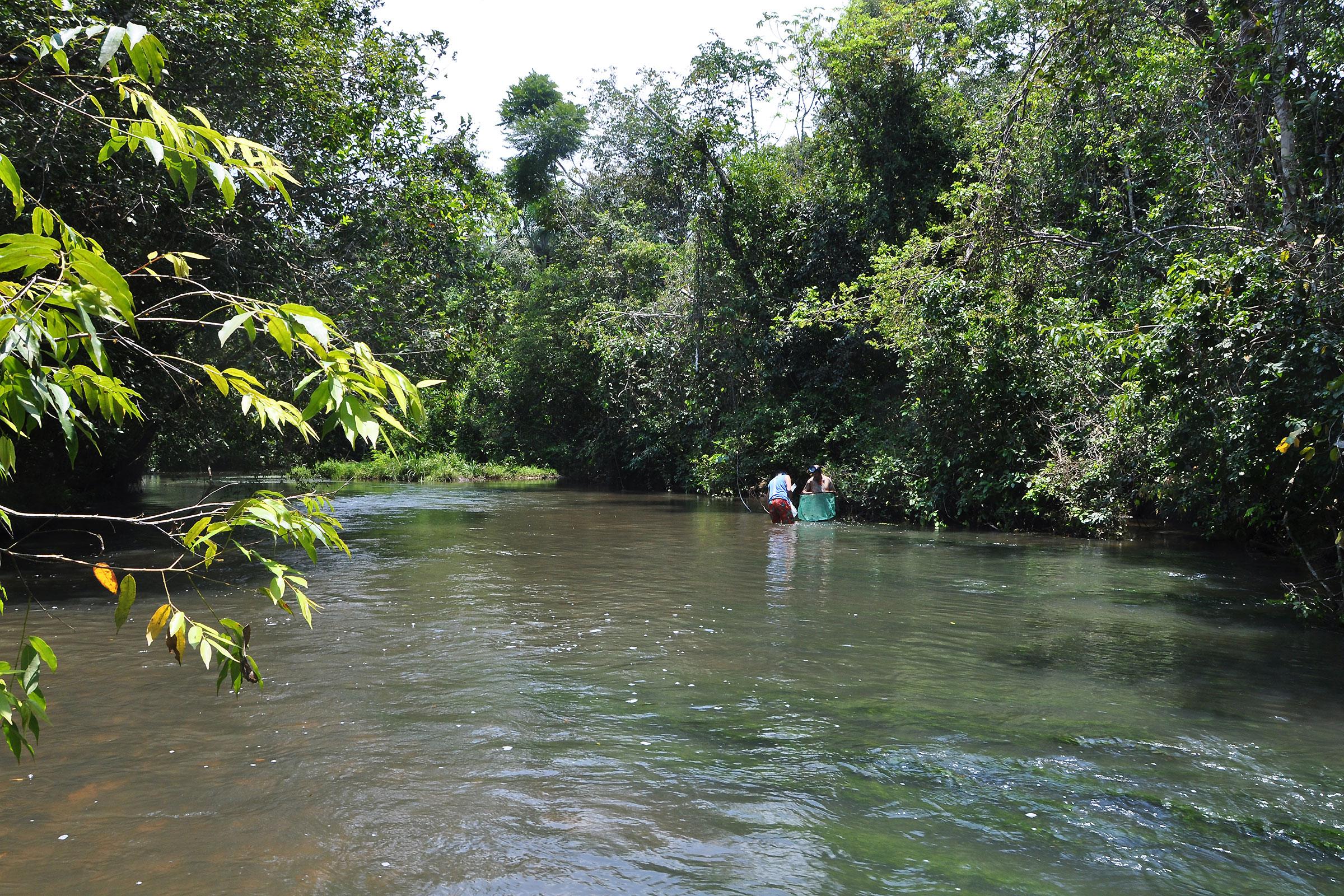 Cano Giramena, Rio Meta basin. ©BAP, photo H. Bleher