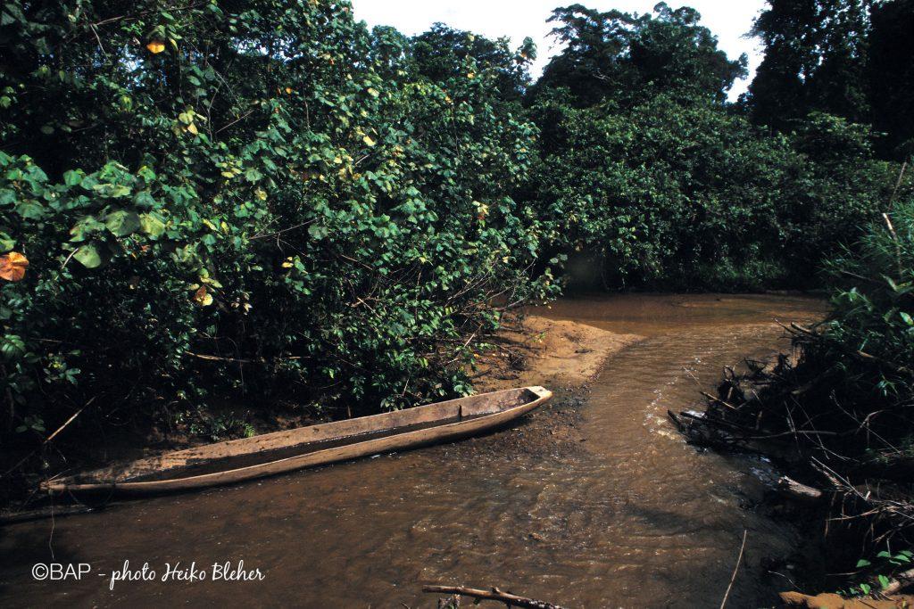 Dabra, Mamberamo, Irian Jaya. ©BAP, photo H. Bleher