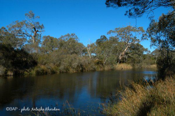 Negritta Falls, Victoria. Photo by N. Khardina