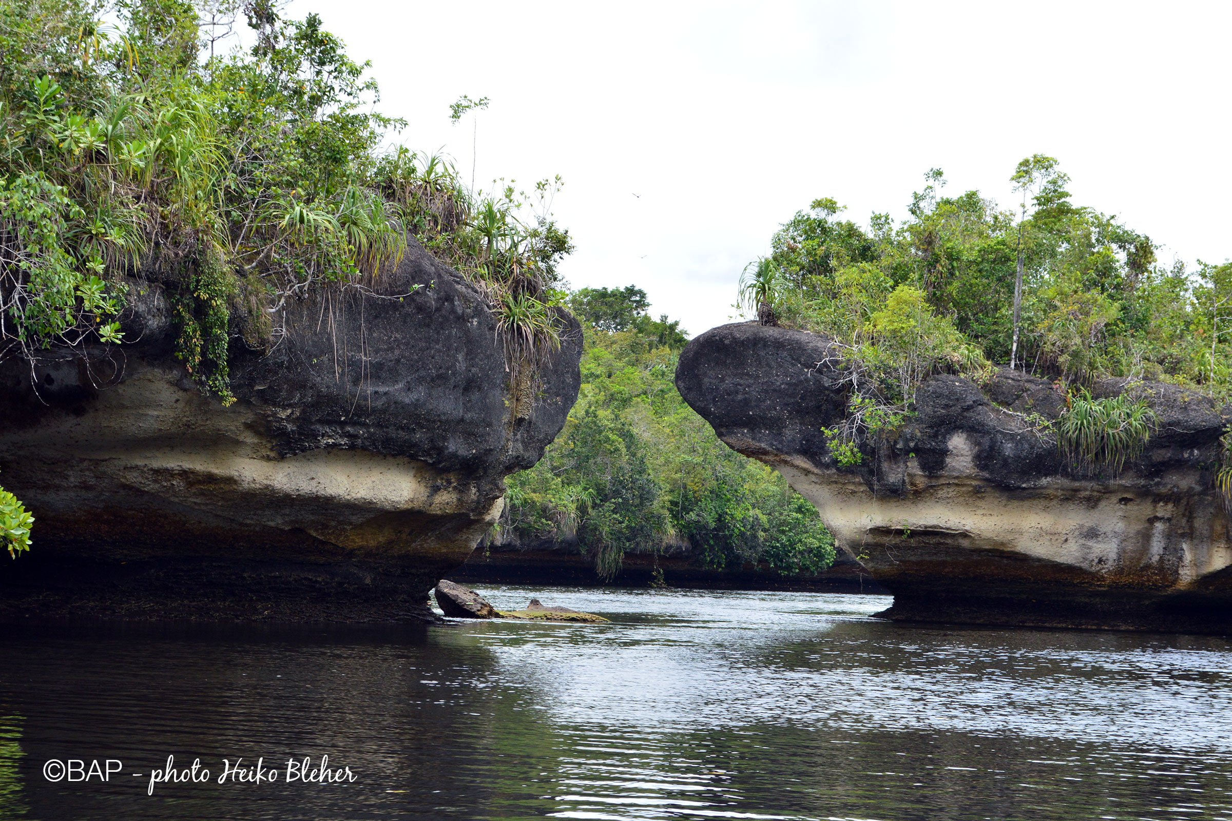 Singai Sin, Aru Archipelago, Indonesia. ©BAP, photo H. Bleher
