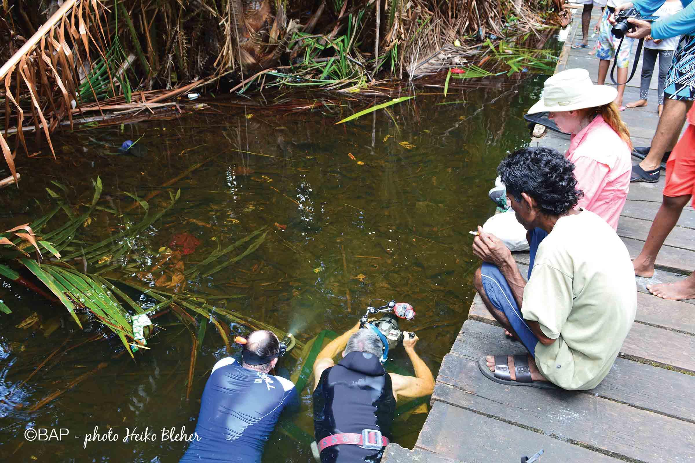 Collecting, Gerry R. Allen and Mark Erdmann in Sungai Galalou. ©BAP, photo H. Bleher